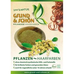 Poster G&S Pflanzen-Haarfarben A3 laminiert